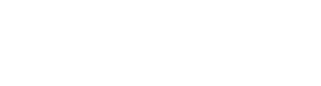 digital works white logo